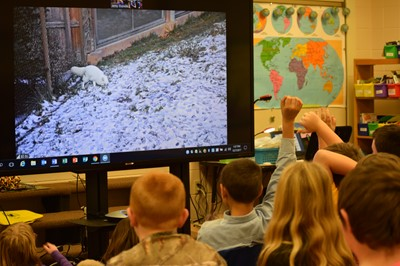 Virtual field trip to the Buffalo Zoo, and more
