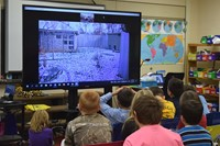 Students view a live video of a zoo habitat with a building, trees, snowy grass