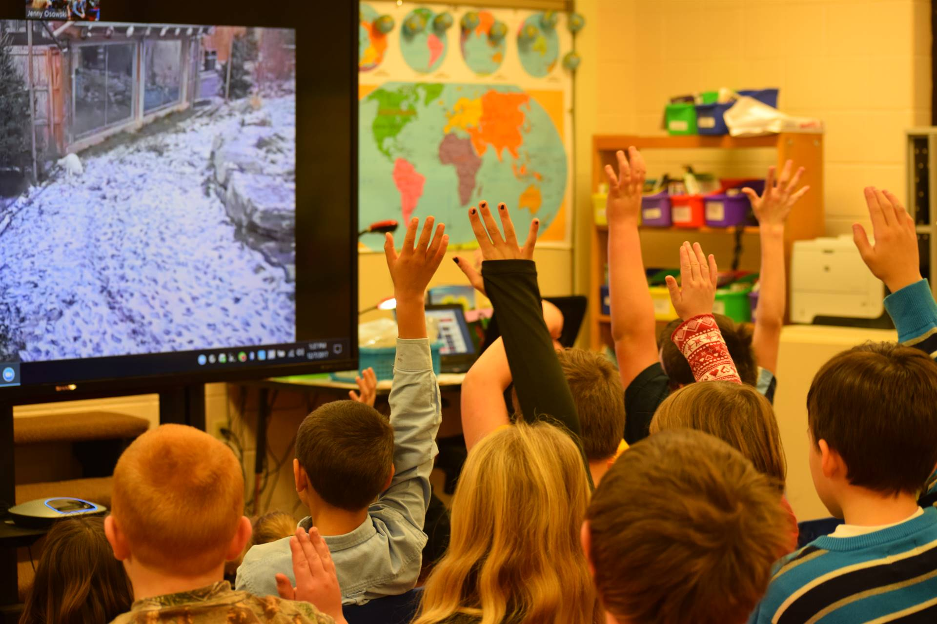 Students raise their hands while watching live video of Arctic fox
